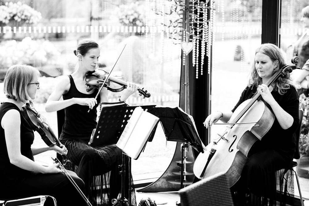 String Trio entertaining guests